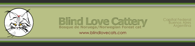 Blind Love Cattery